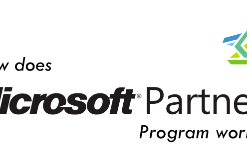 microsoft partner program works